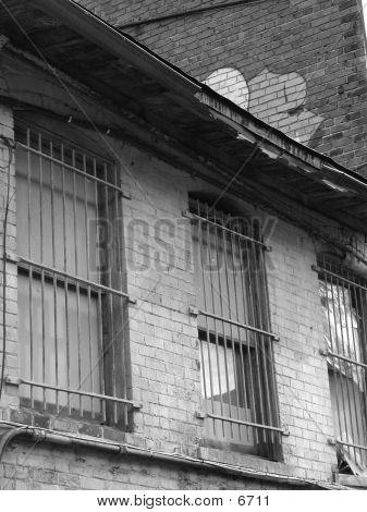 Back Alley Windows 1
