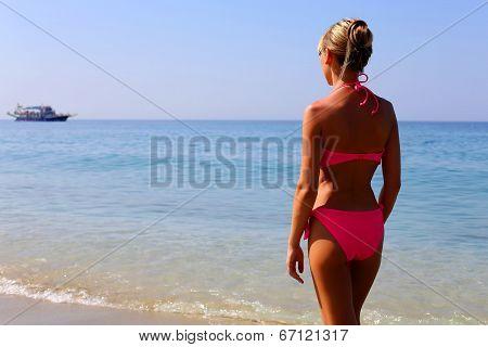 Woman In Pink Bikini Standing On The Beach