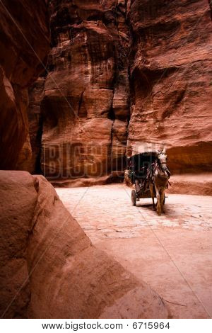 Unrecognizable bedouin drives carriage in canyon in Petra Jordan. poster