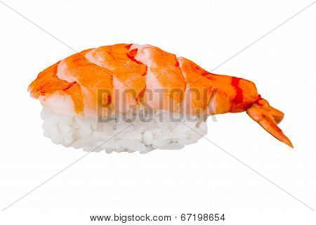 Nigiri Sushi With Shrimp Isolated On White Background