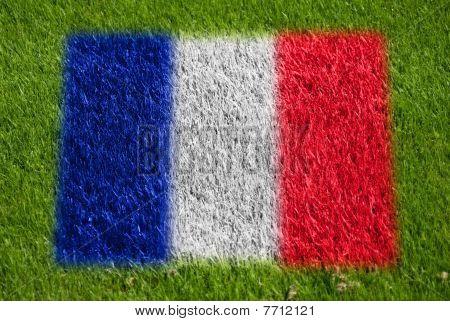 Flag Of France On Grass