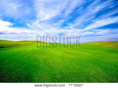 Golf Course  On Summer