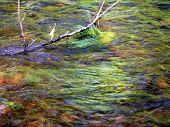green river in washington poster