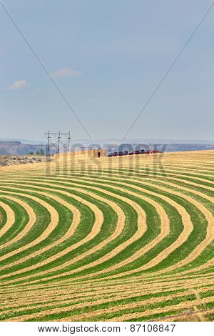 Center Pivot Irrigated Farm Field