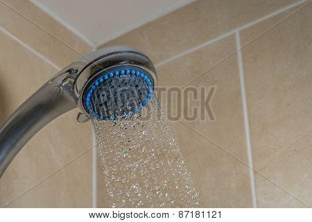 Bathroom Shower Head