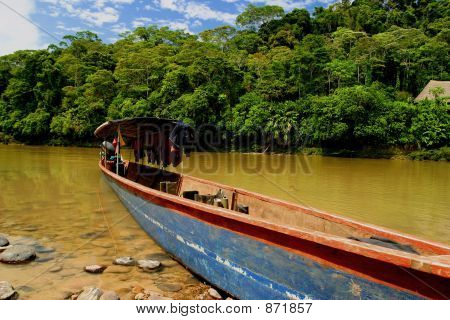 Canoe in Amazon Rainforest