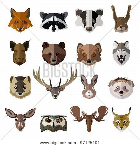 Set of forest animals faces isolated icons. Flat style design.