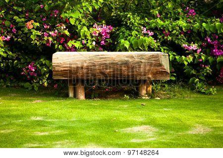 Little Wooden Bench Near Rose Rosebush