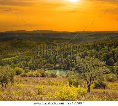 Italian Rural Landscape At Evening