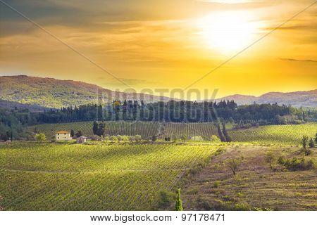 Sunset At Tuscany Meadows