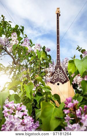 Dombra Kazakh Instrument