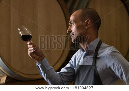 Winemaker in wine cellar holding glass of red wine and checking it. Sommelier testing wines in winery basement. Wine producer inspecting quality of red wine in front of barrels.