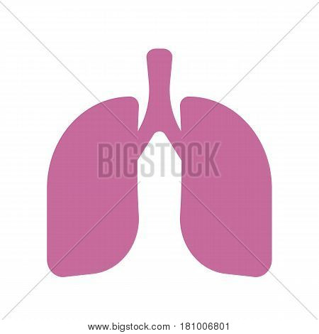 Vector isolated icons - human organs. Lungs on a white background