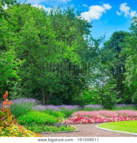 summer park with beautiful flower beds and sky