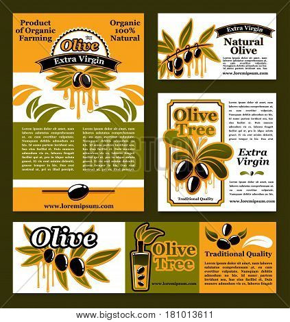 Olive oil products and organic products banners and posters. Vector design of black olives branch and green olive extra virgin oil nutrition information for product package or Italian cuisine