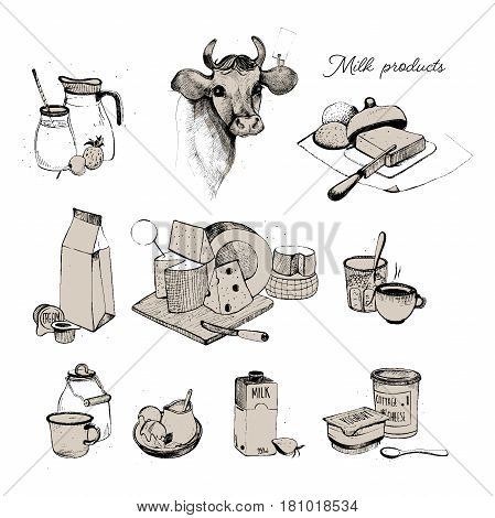 Dairy products hand drawn collection, Set milky farming assortment. Illustration on white background.
