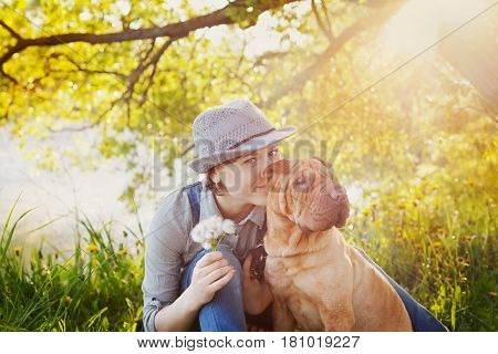 Young woman with bouquet of dandelions kissing her red cute dog Shar Pei on the field near the lake at sunset. True friends forever people and pets concept.