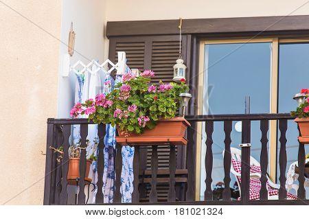 balcony with pots. Beautiful Balcony Flowery Garden