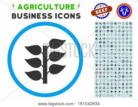 Flora Plant rounded icon with agriculture commercial glyph package. Vector illustration style is a flat iconic symbol inside a circle, blue and gray colors. Designed for web and software interfaces.