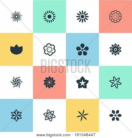Vector Illustration Set Of Simple Rose Icons. Elements Lilac, Laurel, Pattern And Other Synonyms Sword Lily, Daffodils And Delphinium.