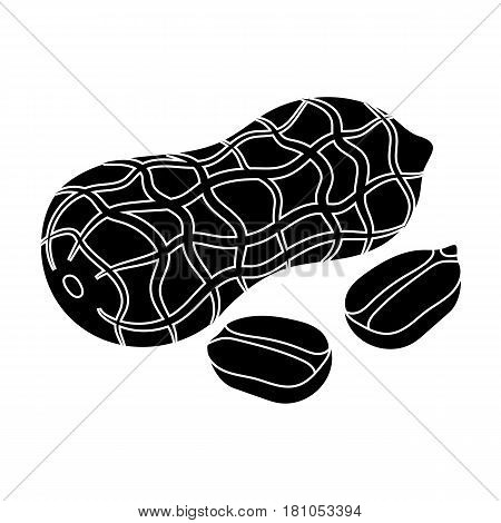 Peanut in the shell.Different kinds of nuts single icon in black style vector symbol stock web illustration.