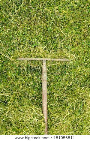 Flatlay rake on a green meadow gardening with a raking tool