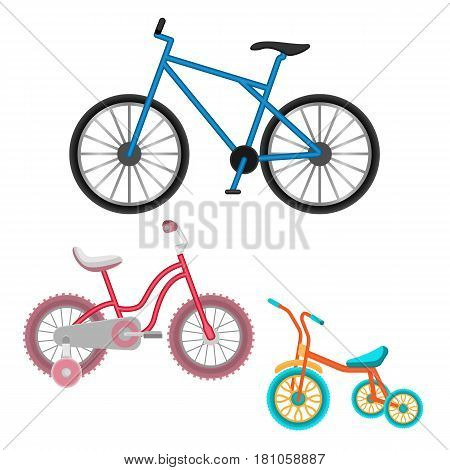 Set of bicycles for all ages vector realistic illustration isolated on white background. Blue bike for grown up, pink cycle for teenager girl and childish three-wheeler biking vehicle