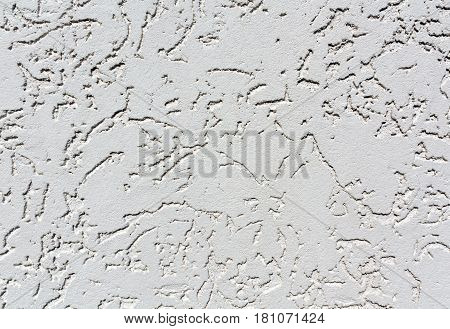 Gray Color Plaster Wall Patten.