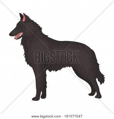 The dark Belgian wolf. Belgium single icon in cartoon style vector symbol stock web illustration.