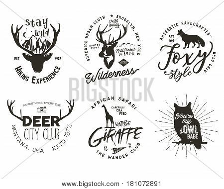 Wild animal badges set. Included giraffe, owl, fox and deer shapes. Stock vector isolated on white background.