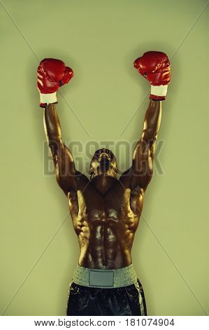 African male boxer with arms raised