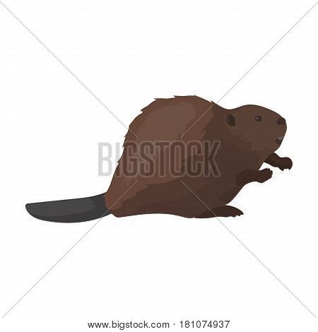 Canadian beaver. Canada single icon in cartoon style vector symbol stock illustration .