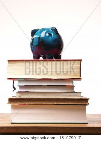 Old used ceramic piggy bank on a pile of book financial concept