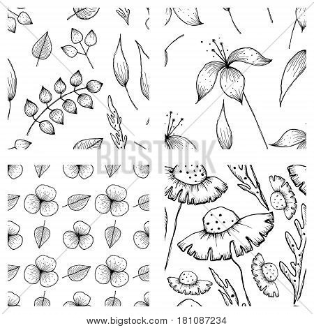 Set Of Vector Illustrations Of Flowers. Seamless Black And White Backgrounds With Hand Drawn Lily, D
