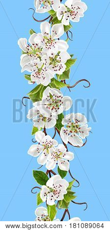 Vertical seamless floral border. Spring flowering. A branch of a blossoming white cherry on a blue background.