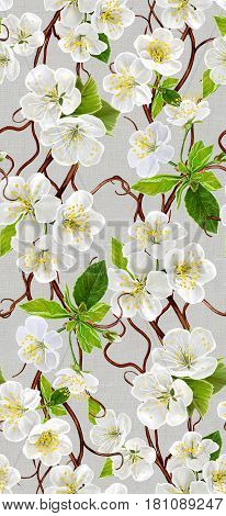 Vertical seamless floral border. Spring flowering. A branch of a blossoming white cherry. Floral background.