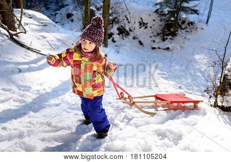 Children are pulling sledge on the mountain road in woods. Active children in the winter sports activities with sleigh on snowy sliding forest road.