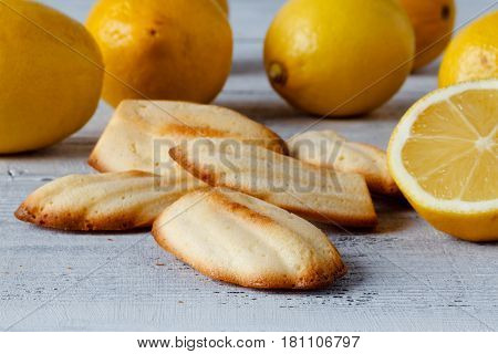 Lemon Madeleine Cookie - This Is A Shot Of A Delicious Lemon Madeleine.