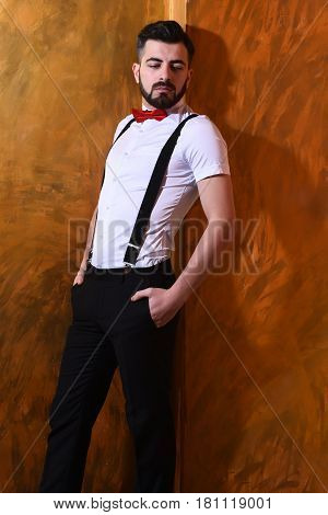 bearded man long beard brutal caucasian hipster with moustache in white shirt and suspenders bow-tie posing with serious face on brown studio wall background