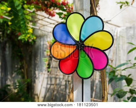 Colorful pinwheel in garden in sun light with blurry background