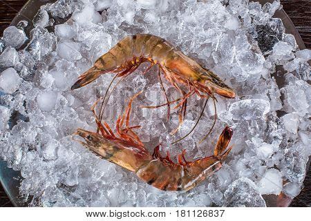 Red argentine shrimp head on on black background. Top view. Shrimp on ice