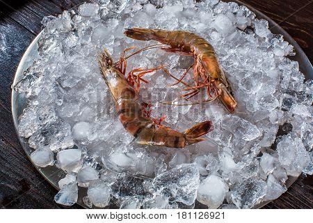 Red argentine shrimp head on on black background. Top view. Shrimp on ice