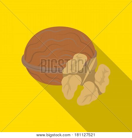 Walnats in the shell.Different kinds of nuts single icon in flat style vector symbol stock web illustration.