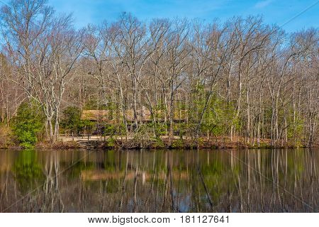 A cabin by a lake reflecting the surrounding trees from the woods as Springtime unfolds.