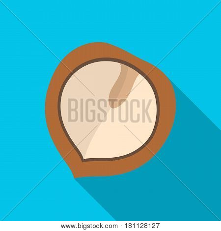 Manchurian walnut.Different kinds of nuts single icon in flat style vector symbol stock web illustration.