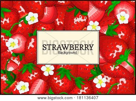 Rectangle label on strawberry background. Vector card illustration. Berry fresh and juicy red strawberry frame peeled piece of half slice for design of food packaging juice breakfast