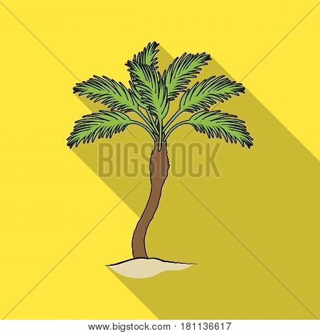 Palm beach tree.Summer rest single icon in flat style vector symbol stock web illustration.