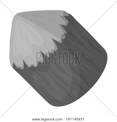 Conical log. Canada single icon in monochrome style vector symbol stock illustration .