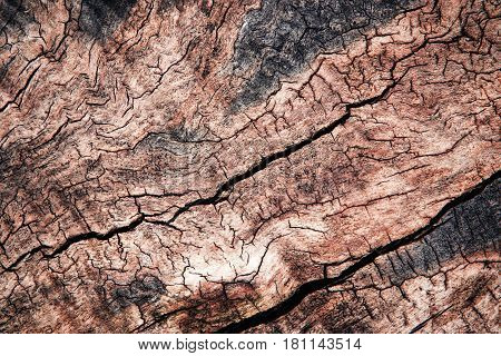 abstract background or texture detail weathered wood with grooves