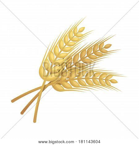 Sprigs of wheat. Plant for brewing beer. Pub single icon in cartoon style vector symbol stock web illustration.